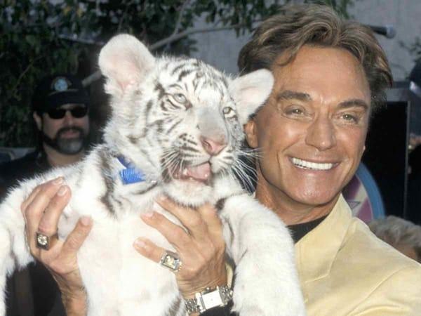 Tiger King Web Series Review